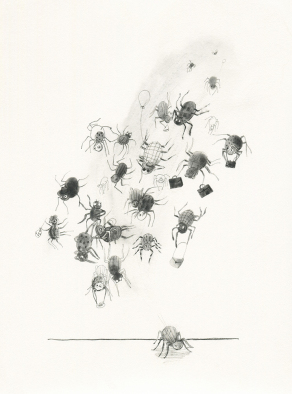 Ballooning-spiders-150