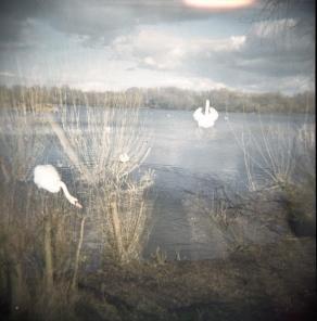 mark_entwisle_photography_023