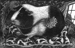 rosamund_fowler_wood_engraving_001