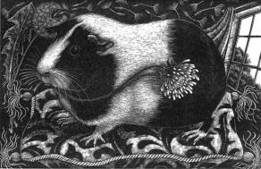 rosamund_fowler_wood_engraving_001