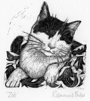 rosamund_fowler_wood_engraving_016