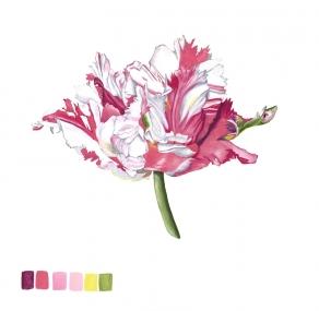 114631Z Brighton Blooms V
