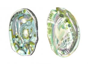 150727Z Abalone Shells II