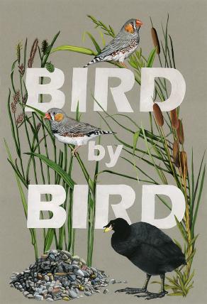 Bird-by-Bird-scan