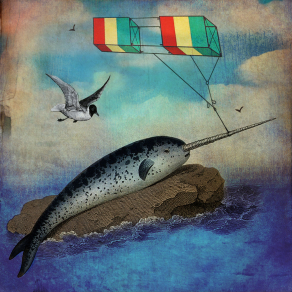 N-is-for-Narwhal