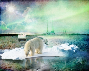 Plea-for-the-Animals---polar-bear